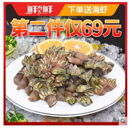 鲜外鲜小佛手螺狗爪螺活龟脚舟山贝类鸡爪螺野生贝类海螺海鲜水产